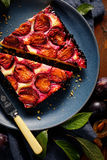 Κέικ δαμάσκηνων σε ένα πιάτο Στοκ εικόνα με δικαίωμα ελεύθερης χρήσης