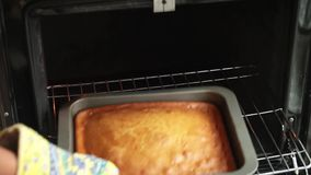 Κέικ από το φούρνο απόθεμα βίντεο
