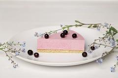 Κέικ ιδρώτα με τα μούρα Στοκ Εικόνα