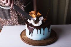 Κέικ κερασιών περικοπών στοκ εικόνα