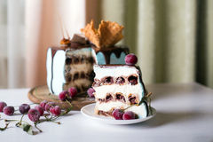 Κέικ κερασιών περικοπών στοκ φωτογραφίες με δικαίωμα ελεύθερης χρήσης