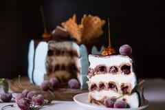 Κέικ κερασιών περικοπών στοκ φωτογραφία με δικαίωμα ελεύθερης χρήσης