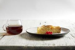 Κέικ μελιού με τα βερίκοκα, πίτα βερίκοκων στοκ φωτογραφίες με δικαίωμα ελεύθερης χρήσης
