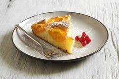Κέικ μελιού με τα βερίκοκα, πίτα βερίκοκων Στοκ φωτογραφία με δικαίωμα ελεύθερης χρήσης