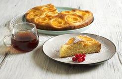 Κέικ μελιού με τα βερίκοκα, πίτα βερίκοκων στοκ εικόνες
