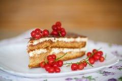 Κέικ μελιού με την κρέμα και τα μούρα Στοκ Εικόνες