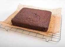 Κέικ μελοψωμάτων σε χαρτί σιλικόνης και το δροσίζοντας ράφι Στοκ εικόνα με δικαίωμα ελεύθερης χρήσης
