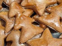 Κέικ μελοψωμάτων Χριστουγέννων στοκ φωτογραφία με δικαίωμα ελεύθερης χρήσης