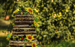 Κέικ με τη ζάχαρη ηλίανθων Στοκ εικόνα με δικαίωμα ελεύθερης χρήσης