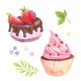 Κέικ με τις φράουλες και τήξη με την κρέμα, φύλλα, dragées διανυσματική απεικόνιση