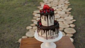 Κέικ με τους λεκέδες φρούτων και σοκολάτας απόθεμα βίντεο