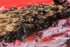 κέικ μούρων Στοκ φωτογραφία με δικαίωμα ελεύθερης χρήσης