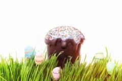 Κέικ Πάσχας και κρύψιμο αυγών Πάσχας στη χλόη Στοκ εικόνα με δικαίωμα ελεύθερης χρήσης