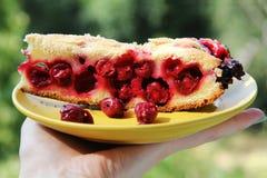 κέικ σε ένα πιάτο Στοκ εικόνες με δικαίωμα ελεύθερης χρήσης