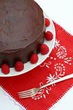 Κέικ σμέουρων σοκολάτας στοκ φωτογραφία