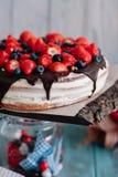 Κέικ σοκολάτας με τα μούρα και μέντα στη στάση στοκ φωτογραφία