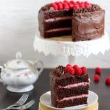 Κέικ σοκολάτας με τα σμέουρα στοκ εικόνες