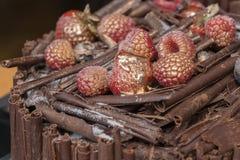 Κέικ σοκολάτας με τα σμέουρα Στοκ Φωτογραφία