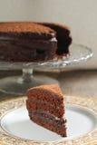Κέικ σοκολάτας με την κρέμα σοκολάτας Στοκ εικόνες με δικαίωμα ελεύθερης χρήσης