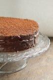 Κέικ σοκολάτας με την κρέμα σοκολάτας Στοκ Εικόνα