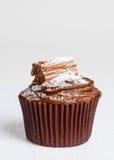 Κέικ σοκολάτας Στοκ Φωτογραφία