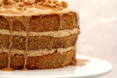 Κέικ στρώματος ξύλων καρυδιάς καφέ Στοκ Φωτογραφία
