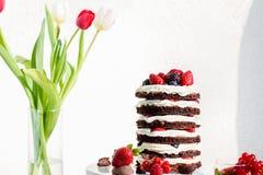 Κέικ στρώματος σοκολάτας Στοκ εικόνες με δικαίωμα ελεύθερης χρήσης