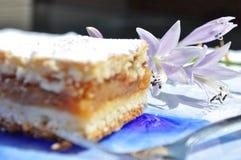 Κέικ της Apple και πορφυρά λουλούδια Στοκ Εικόνα