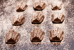 Κέικ της Madeleine στο σκοτεινό υπόβαθρο Στοκ εικόνα με δικαίωμα ελεύθερης χρήσης