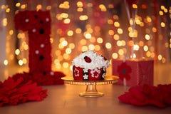 Κέικ, το πρώτο έτος, κόκκινο, ladybug, γενέθλια ντεκόρ Στοκ εικόνες με δικαίωμα ελεύθερης χρήσης