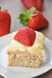 Κέικ φραουλών βανίλιας στοκ εικόνες