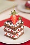 Κέικ φραουλών σοκολάτας με την κτυπημένη κρέμα Στοκ Εικόνες