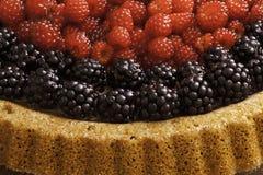 Κέικ φρούτων Στοκ Εικόνα