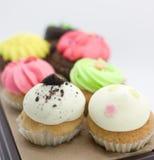Κέικ φλυτζανιών, muffin κρέμας Στοκ εικόνα με δικαίωμα ελεύθερης χρήσης