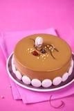 Κέικ Entremet σοκολάτας της Apple, βακκινίων και γάλακτος Στοκ Εικόνες