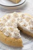 κέικ leches tres Στοκ Εικόνες
