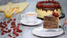 Κέικ Medovik στρώματος μελιού σοκολάτας Κομμάτι του κέικ μελιού σοκολάτας απόθεμα βίντεο