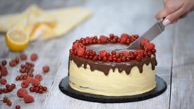 Κέικ Medovik στρώματος μελιού σοκολάτας με τα μούρα Κοπή κέικ απόθεμα βίντεο