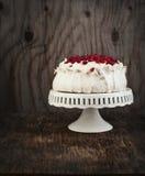 Κέικ Pavlova με το ρόδι Στοκ Εικόνες