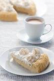 Κέικ Tres leches Στοκ Εικόνες
