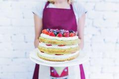 Κέικ Whoopie στο πιάτο με τα φρέσκα μούρα, κράτημα χεριών γυναικών ` s Στοκ Εικόνα