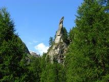 Κέντρισμα βράχου μεταξύ των δέντρων πεύκων Arolla, Ελβετία Στοκ φωτογραφίες με δικαίωμα ελεύθερης χρήσης