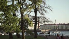 Κέντρο της Άγιος-Πετρούπολης: Ποταμός Neva, ραμφικές στήλες απόθεμα βίντεο