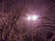 Κέντρο του χιονώδους δρόμου στην πόλη νύχτας με τις χιονοπτώσεις στοκ φωτογραφία