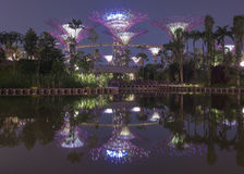 Κήποι από τον κόλπο - έξοχα δέντρα στοκ εικόνες