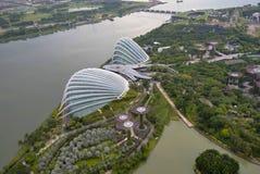 Κήποι από τον κόλπο, κήποι μαρινών, Singapor στοκ εικόνα με δικαίωμα ελεύθερης χρήσης