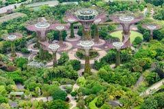 Κήποι από τον κόλπο, Σιγκαπούρη, Ασία Εναέρια άποψη του πάρκου με Supertrees στοκ εικόνα με δικαίωμα ελεύθερης χρήσης