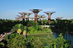 Κήποι από τον κόλπο στοκ φωτογραφία με δικαίωμα ελεύθερης χρήσης