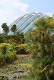 Κήποι από τον κόλπο - Σιγκαπούρη Στοκ Εικόνα