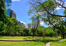 Κήποι και ουρανοξύστες στη Μανίλα, Φιλιππίνες Στοκ Εικόνες
